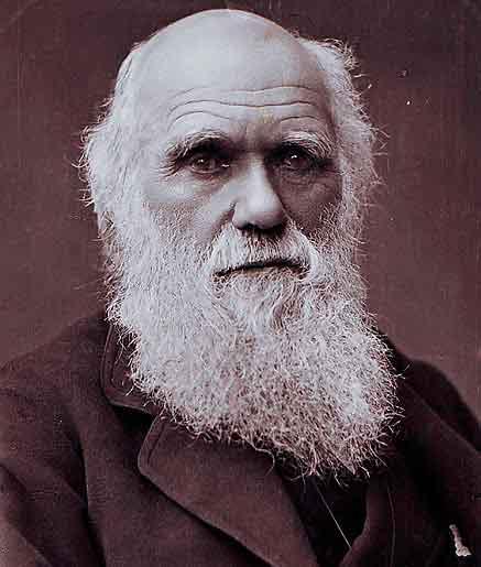 Charles Darwin Facial feedback hypothesis